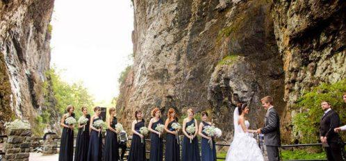 bridge-wedding-party